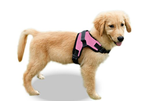 Copatchy No Pull Reflective Adjustable Dog Harness with Handle (Medium, Pink)