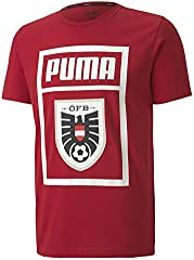 PUMA Öfb DNA tee - Camiseta Hombre