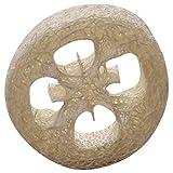 Fltaheroo 4-6Cm de Ancho 40 Unids/Lote Rebanada de Esponja Natural DIY Herramientas de JabóN Personalizadas, Limpiador, Estropajo de Esponja, Soporte de JabóN Facial
