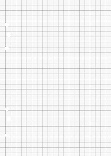 Brunnen 106620201 Ringbucheinlagen A6 (10,5 x 14,8 cm), kariert, 50 Blatt, 70 g/m²)