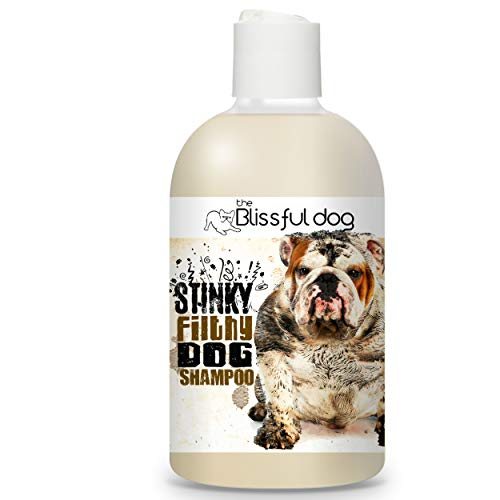 The Blissful Dog Stinky Filthy Dog Shampoo, 16-Ounce