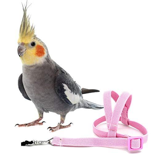 Correa de arnés de pájaro loro, cuerda de entrenamiento de vuelo al aire libre antimordida de 2 m, suministros para mascotas para guacamayos grises africanos, periquito, cacatúa, cacatúa, conure, agap