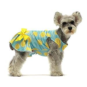 Fitwarm Lemon Summer Dog Dress Puppy Clothes Doggie Sundress Pet Vest Cat Apparel Water Blue Medium