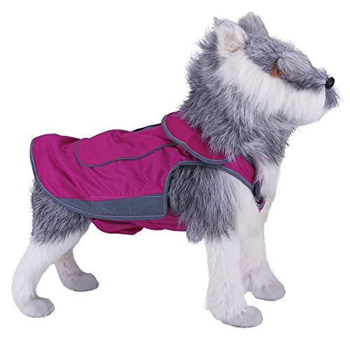 ThinkPet Chaqueta Perros Abrigo Perro Invierno Abrigo Forrado Impermeable con Copo de Nieve Sudadera Perro con Cintas Reflectantes para Perros pequeños medianos y Grandes