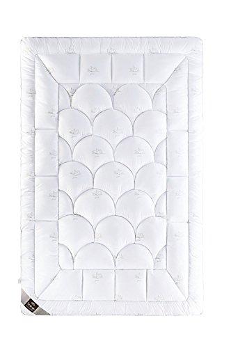 sei Design Premium Winter Bettdecke SWAN 155x220 mit daunenähnlicher Füllstruktur – extra warm – Bezug 100{7fb67830bd29eafb9343c044232cd7a15ca0f08cafbc17eebc5b8861cbd145f7} Baumwolle | leichte Decke mit hoher Wärmehaltung