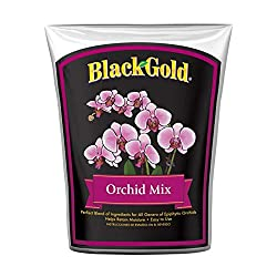 Black Gold 1411402 8.00Qtp Orchid Mix