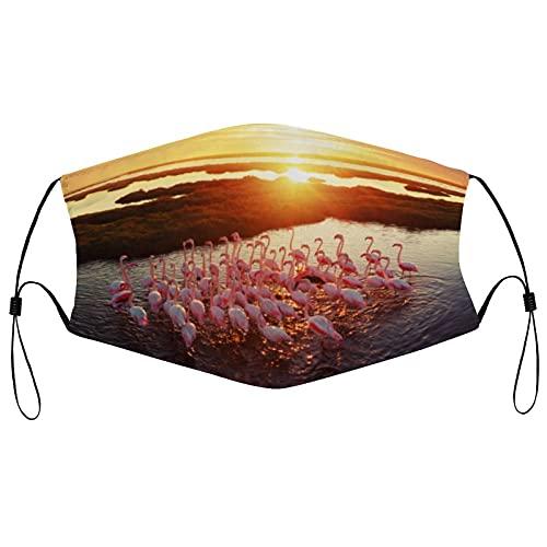 Tela Face Ma_sks, reutilizable y transpirable, cara co-ver con 2 filtros pasamontañas ajustable protector bucal para hombres y mujeres, flamencos en el humedal durante la puesta del sol