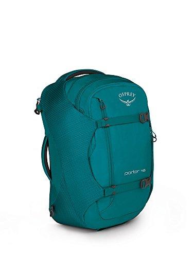Amazon.com | Osprey Porter 46 Travel Backpack