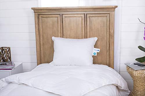 Continental Bedding 100% Goose Down Pillows -...