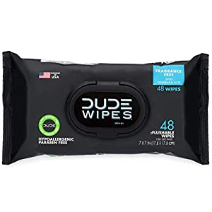 Antibacterial Hand Wipes DUDE Wipes Flushable Wipes Dispenser, 48 Count (Pack of 1)