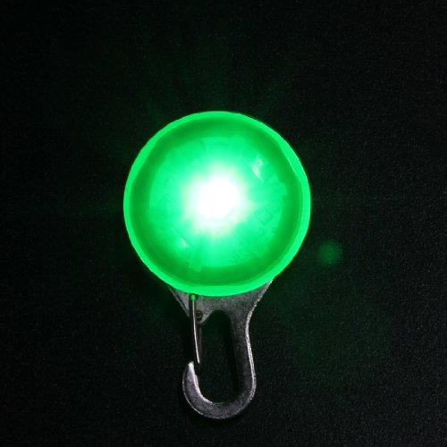 Médaille LED Lumineux Pendentif de Collier pour Chien...