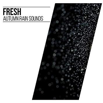 #18 Fresh Autumn Rain Sounds for Sleep