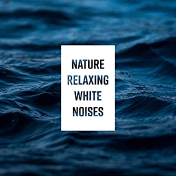 Nature Relaxing White Noises: 2019 Compilation of New Age Nature Music, Sounds of Water & Animals with Instrumental Melodies, Background for Total Relaxation, Calming Down, Rest