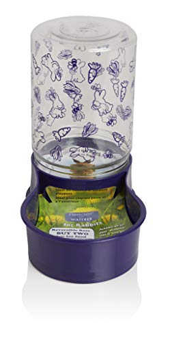 Lixit Animal Care Rabbit Feeder/Water Fountain, 48-Ounce by Lixit Animal Care
