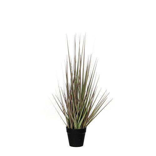 MICA Decorations Herbe Violet dans Pot en Plastique D10 cm – H53 cm Plante en Plastique, PVC, 30 x 30 x 53 cm, PVC, Purple, 30 x 30 x 53 cm