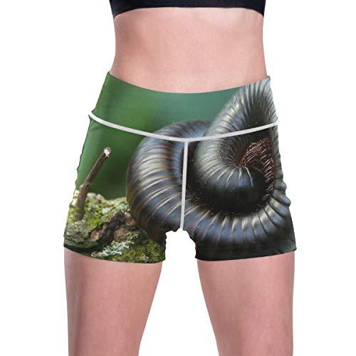 FANTAZIO Giant Centipedes - Pantalones de ejercicio para mujer, pantalones de yoga,...