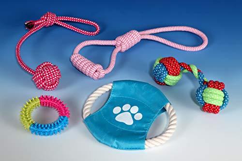 B2Quadrat Dogs Hundespielzeug für kleine bis große Hunde und Welpen, 5er Set für Intelligenz, robust