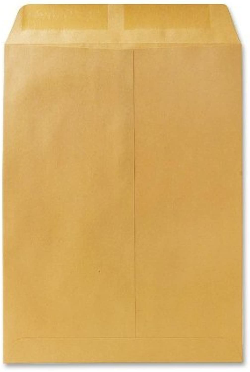 Quality Quality Quality Park Large Format Catalog Envelopes, 9 x 12 inches, Box of 250 (QUA41460) by Quality Park B0141M8Y8M | Großartig