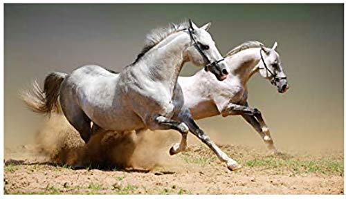 Rompecabezas para Adultos, Juegos educativos, Rompecabezas para niños Adultos Juguete Educativo - Dos caballos-2000 Piezas