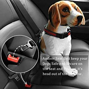 Aodoor Auto Hunde Sicherheitsgurt - 2
