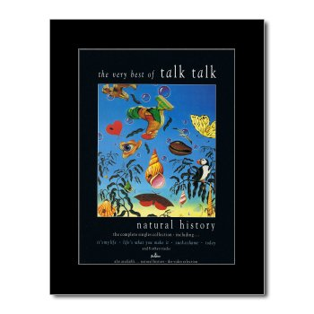 TALK TALK - Natural History: The Very Best Of Matted Mini Poster - 28.5x21cm