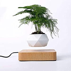 Levitating Air Bonsai Pot, Rotation Flower Pot Planters, Magnetic Levitation Suspension Floating Pot, Potted Plant Home Desk Decor in Flower Pots & Planters from Home & Garden on (Light Color)