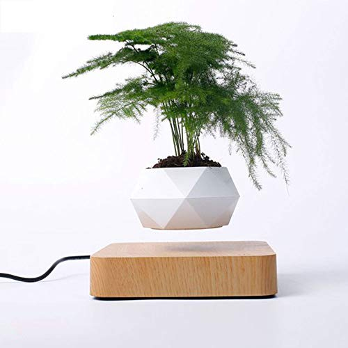 Levitating Air Bonsai Pot, Rotation Flower Pot Planters, Magnetic Levitation Suspension Floating Pot, Potted Plant Home Desk Decor in Flower Pots & Planters from Home & Garden on (Light Color)