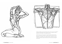 Anatomia artistica. Carnet di morfologia #10