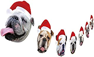 Best dog christmas funny Reviews