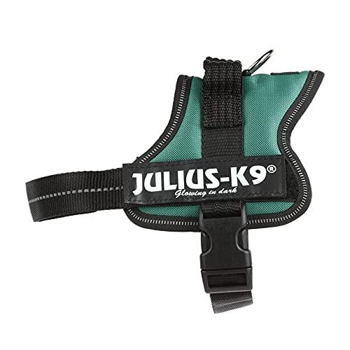 JULIUS-K9 - Arnés para perros, color Verde, talla S / Mini