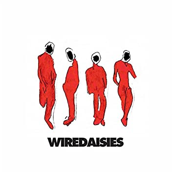 Wire Daisies