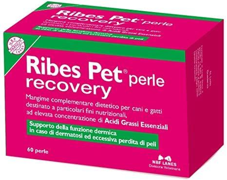 NBF Lanes Integratore Alimentare per Cani e Gatti Ribes-Pet Recovery 60 Perle