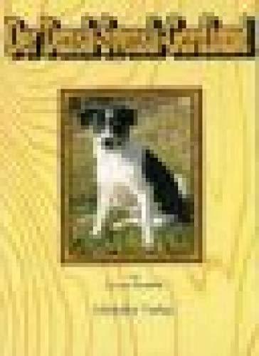 Dansk-Svensk-Gardhund - Dänisch-Schwedischer-Hofhund - Dansk-Svensk-Farmdog - Dänischer Bauernhund: unkomplizierter Wegbegleiter und pflegeleichte Hunderasse