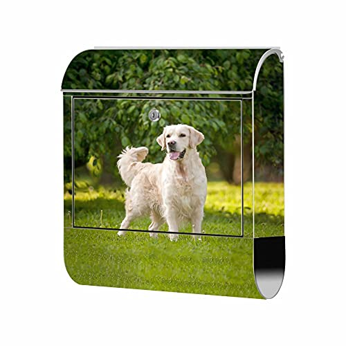 Briefkasten Edelstahl - Motiv Hund Golden Retriever 1