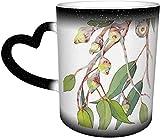 Tazas de café australiano nativo de eucalipto rama del árbol sensible al calor taza cambiante de color taza en el cielo taza de cerámica regalos personalizados para los amantes de la familia amigos