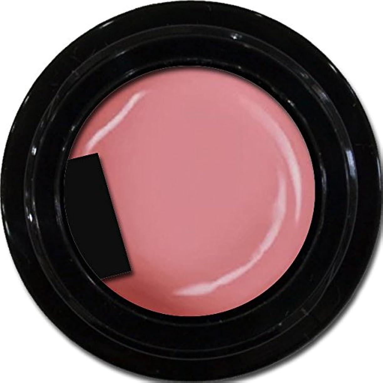 ケント偽善かすかなカラージェル enchant color gel M210 ApricotPink 3g/ マットカラージェル M210 アプリコットピンク 3グラム
