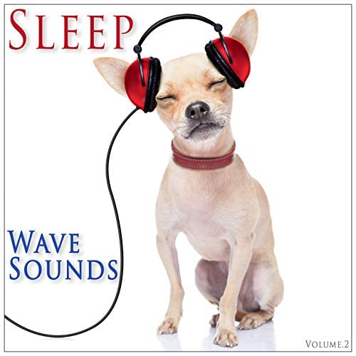 Nature Sounds & Nature Sounds Nature Music