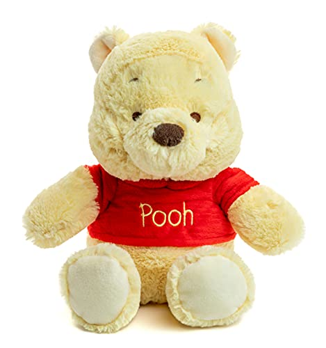 Disney Baby Winnie The Pooh and Friends Stuffed Animal Plush Toy, Pooh
