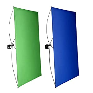 Neewer 39x55Inches/100x140CM Portable 2-in-1 Chromakey Blue/Green Backdrop Screen with 4 Flexible Rods/Bracket/Carry Bag for Live Streaming, Studio and TikTok/YouTube/Gaming Videos(Stand Not Included)