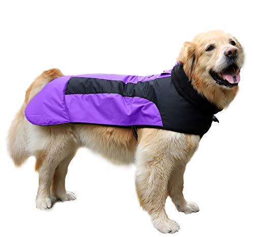 Abrigo Chaqueta para Perro, Caliente para Mascotas, Chaqueta Chubasquero Impermeable de Invierno, Cazadora Perro con Forro Polar, Ropa para Perro. (6L, 1206 Morado)