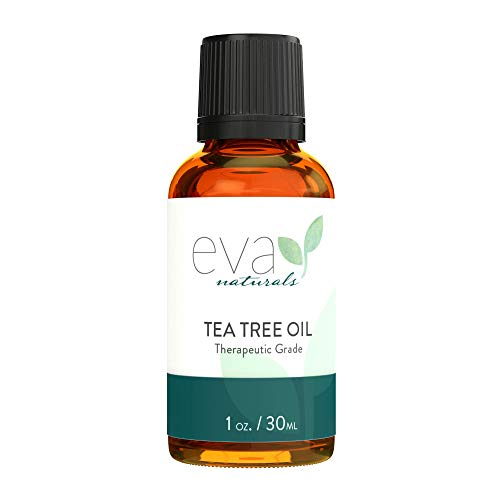 Eva Naturals Pure Tea Tree Oil (1oz) - Antibacterial Melaleuca Essential Oil Fights Acne, Eases Dandruff - Great for Insect Bites, Bruises and DIY Projects - Premium Quality, Sourced from Australia