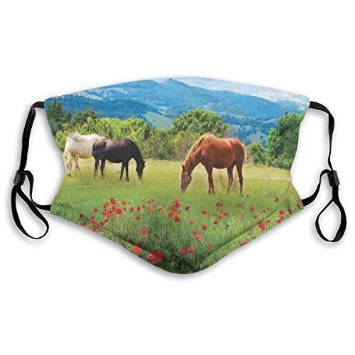Schal, Verschiedene Arten von Pferden, die Gras auf dem Feld mit Berglandschaft ländlichen Szenendruck Essen, gedruckte Gesichtsdekorationen für erwachsenes Kind