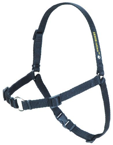 SENSE-ation No-Pull Dog Harness - Black XSmall by Softouch Concepts