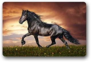 Fantastic Doormat Wild Animal Cool Black Horse Sunset Art Door Mat Rug Indoor/Outdoor/Front Door/Bathroom Mats&Bedroom Doo...