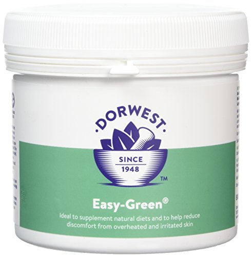 DORWEST HERBS Easy Green Poudre pour Chien