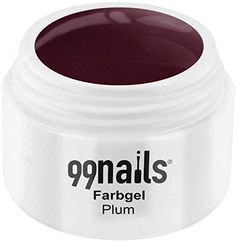 99 Nails® Farbgel – Plum, 1er Pack (1 x 5 ml)
