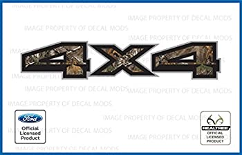 Decal Mods 4X4 Truck Decals Stickers for Ford F150  2015-2020  Realtree - XtraBrown [Set of 2]