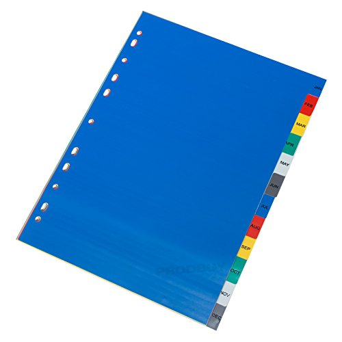 [10 Pack] Jan-Dec Monthly A4 Index Dividers Ring Binder Tabbed Blue Subject Files