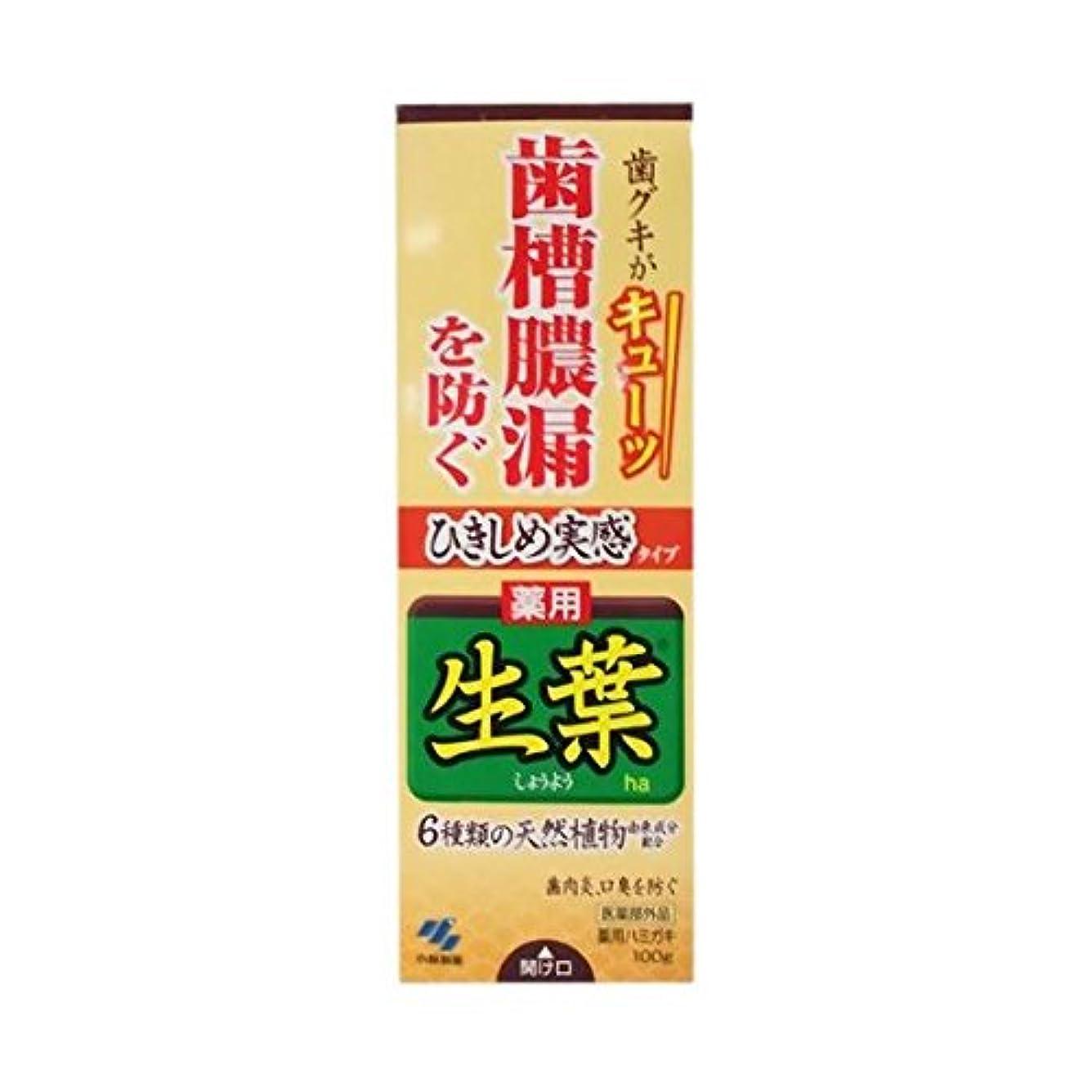 爆風降雨アロング【お徳用 3 セット】 ひきしめ生葉 100g×3セット