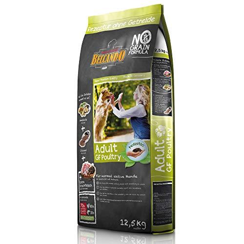 Belcando Adult GF Poultry [12,5 kg] Hundefutter | Rezeptur ohne Getreide | Alleinfuttermittel für ausgewachsene Hunde ab 1 Jahr